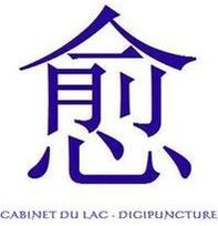 CABINET DU LAC - DIGIPUNCTURE